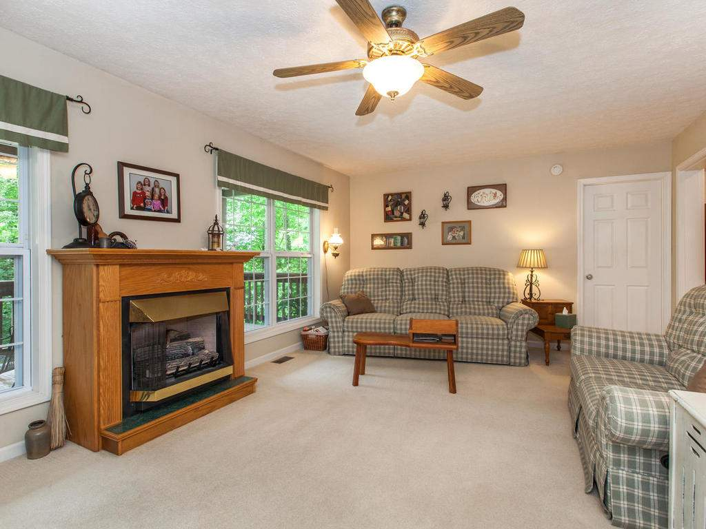 16-Daniel-Ln-Black-Mountain-NC-011-19-Living-Room-MLS_Size