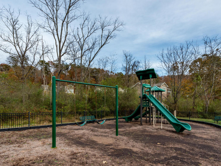 36 Luther Cove Rd Candler NC-032-36-Playground-MLS_Size