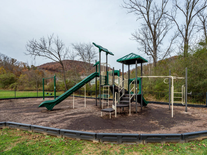 36 Luther Cove Rd Candler NC-033-8-Playground-MLS_Size