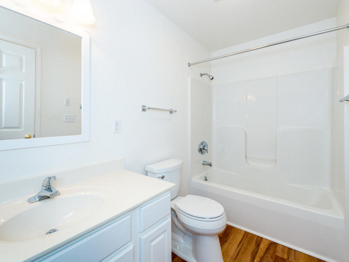 45_W_Cotton_Ave_Black_Mountain-027-34-Lower_Level__Bathroom-MLS_Size