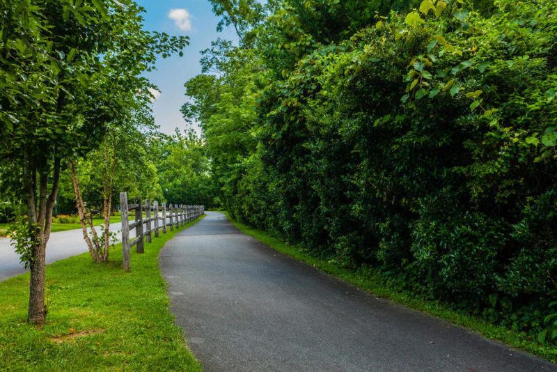 The Flat Creek Trail spur of the Black Mountain Greenway offers a creekside stroll from East Cotton Avenue to downtown.