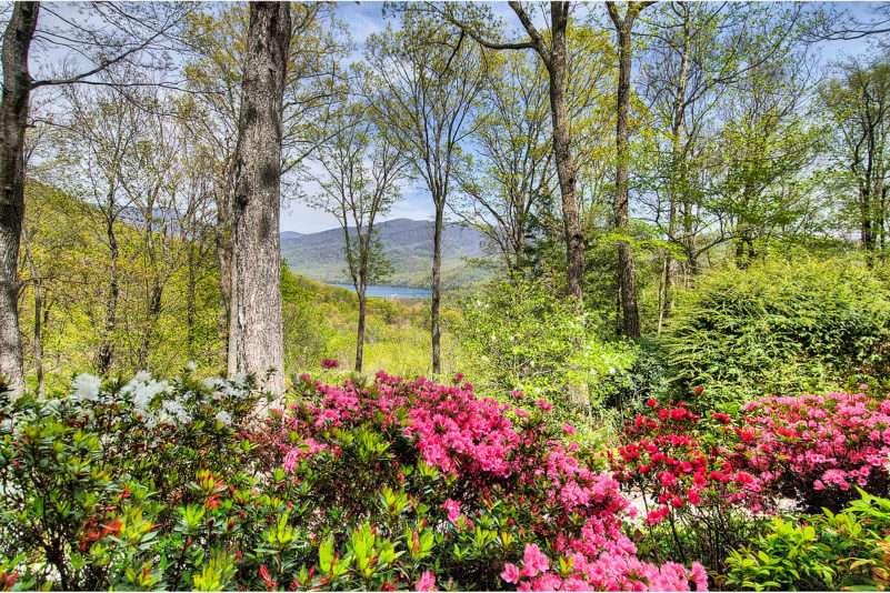 Laurel Ridge Properties for Sale – North Carolina