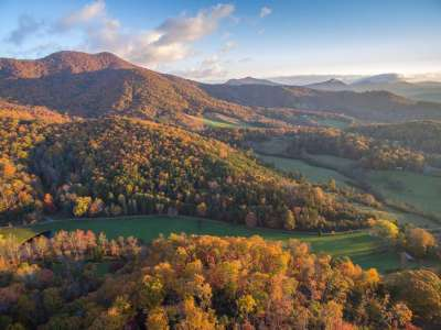 Candler, NC Real Estate Available