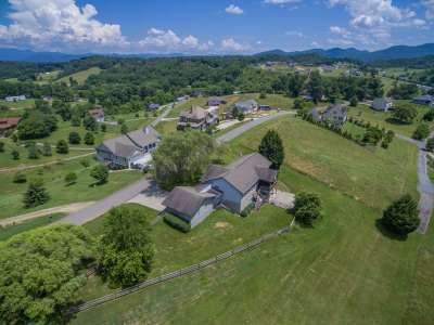 Homes for Sale in Leicester, NC