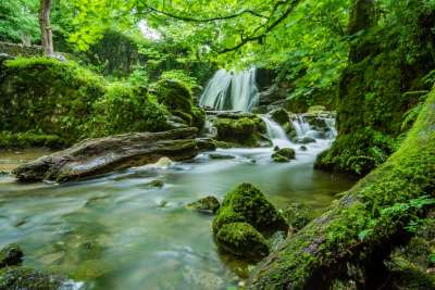 Available Asheville Homes and Land with Waterfalls