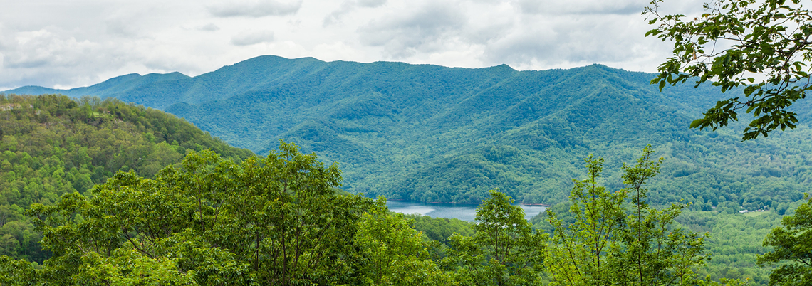 Asheville Watershed (Burnette Reservoir)