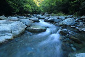 freestone-stream