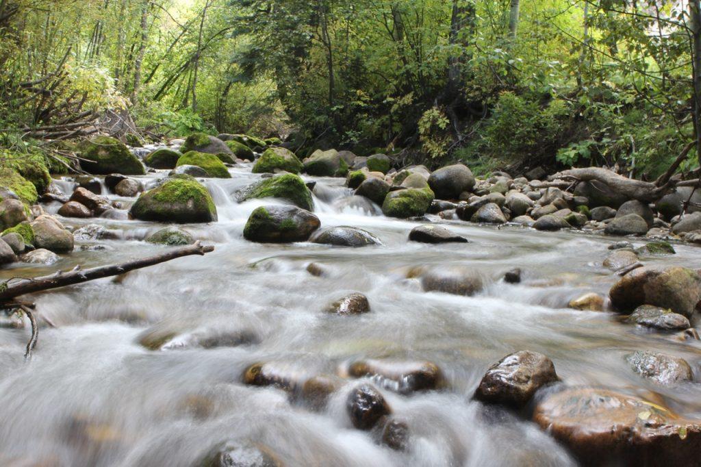 freestone mountain stream