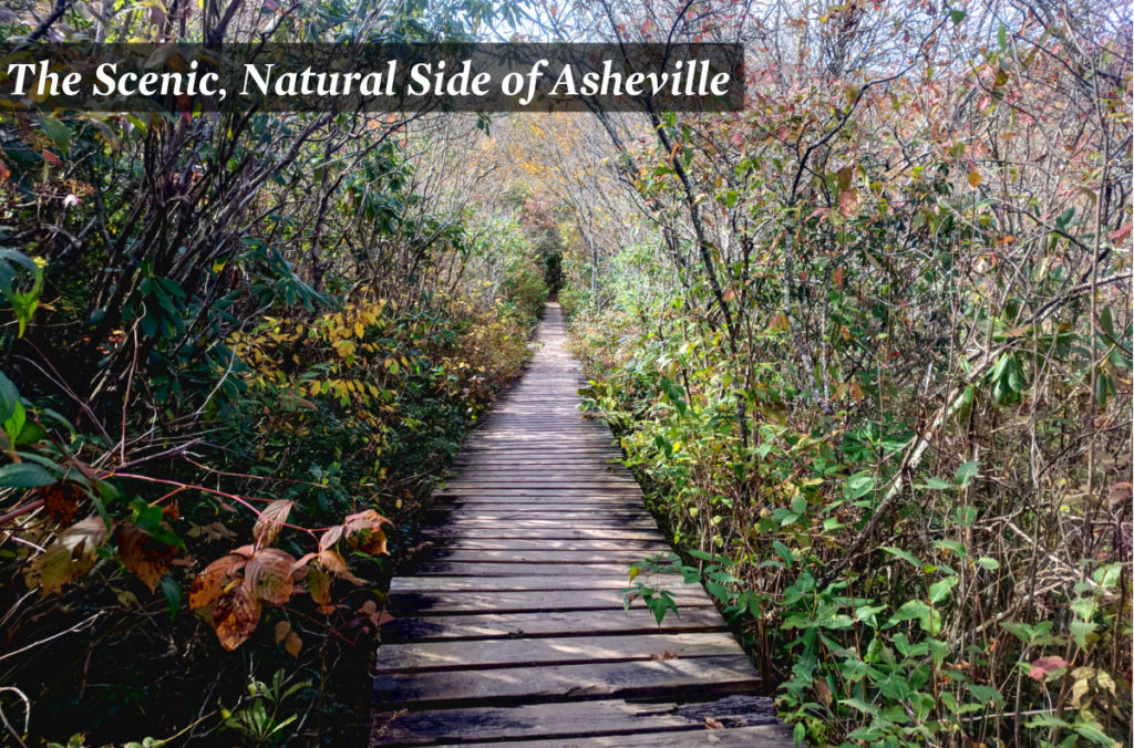Asheville walking and hiking tours