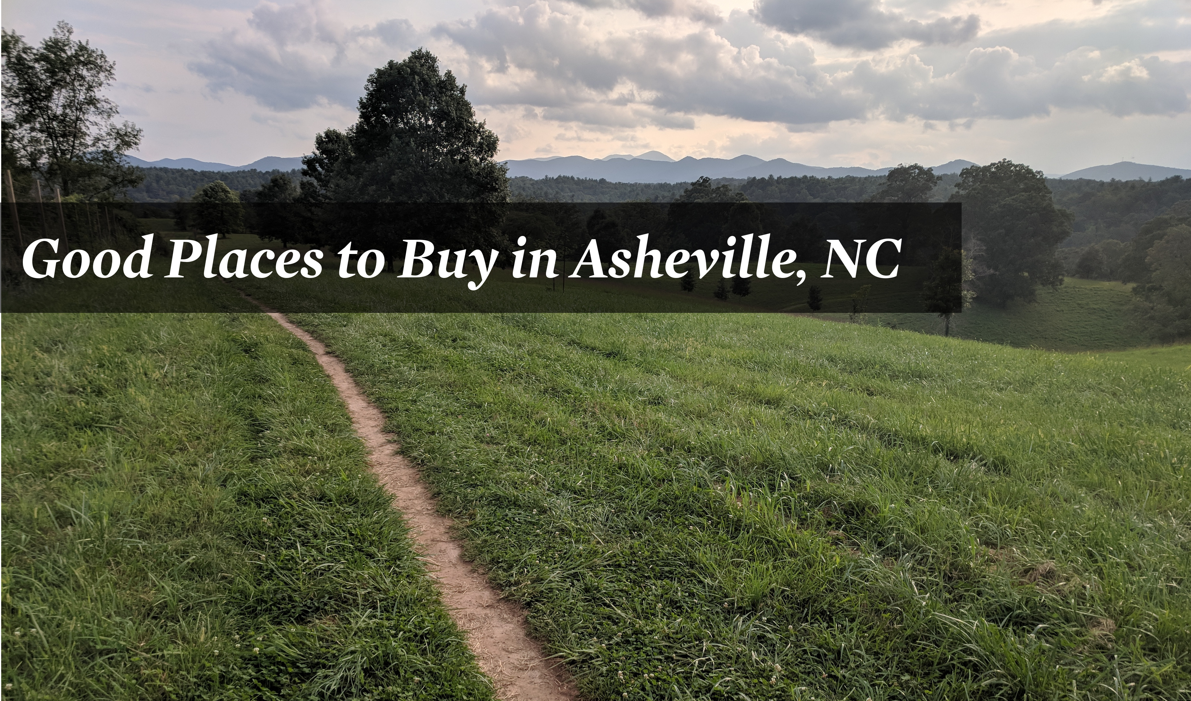 Good Places To Live In Asheville Nc Locations To Buy Property