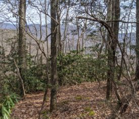 View lot in Laurel Ridge, Black Mountain, NC