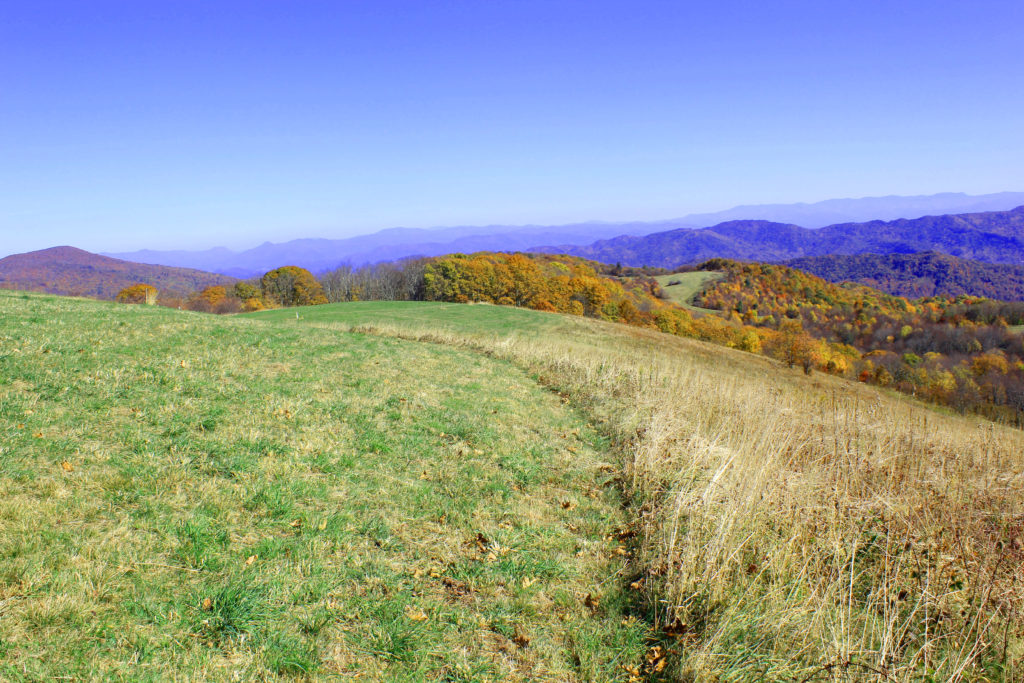 Max Patch in the Fall