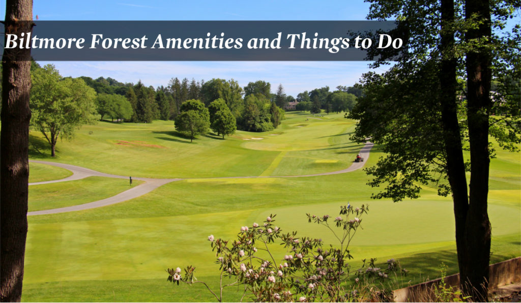 Bitlmore Forest Amenities and Things to Do